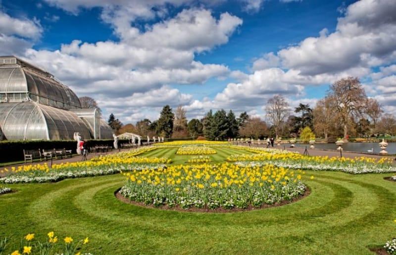 世界遺産・世界最大規模の『キュー・ガーデン(Kew Gerdens)』