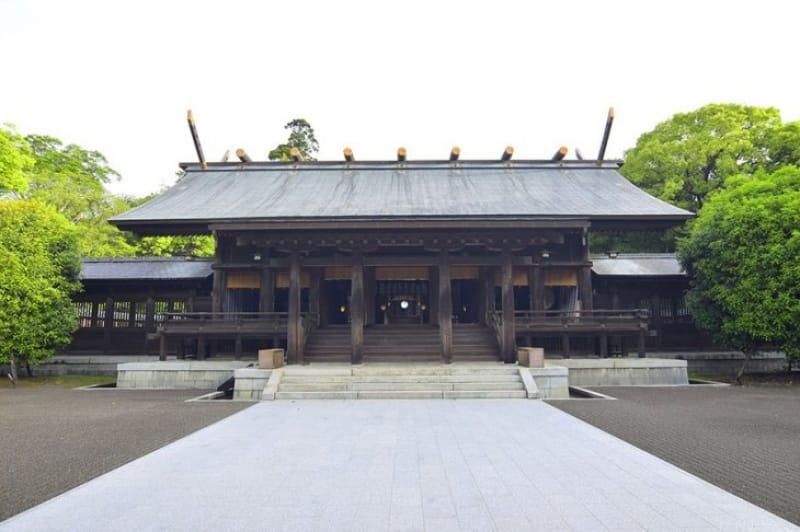 天然記念物の藤の花 宮崎神宮
