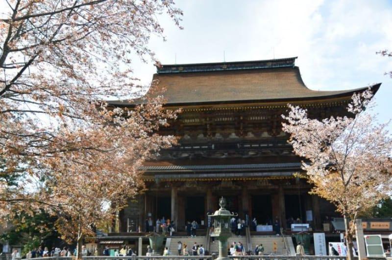 100438:壮麗な金剛山寺に到着!