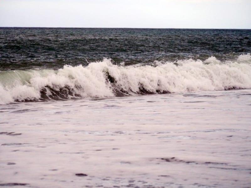 日本海の海の様子です。