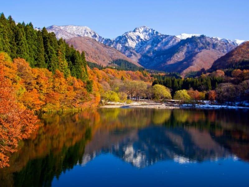 森と湖の遊び場・大源太キャニオン