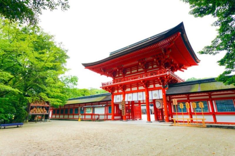 京都市内で最も遅い紅葉が見られる・下鴨神社
