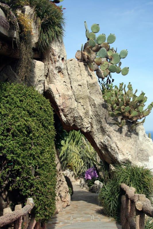 モナコ全体が見渡せる 熱帯公園