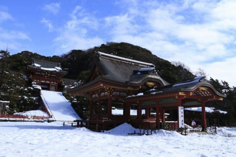「冬」の見どころといえば「 鶴岡八幡宮の初詣」