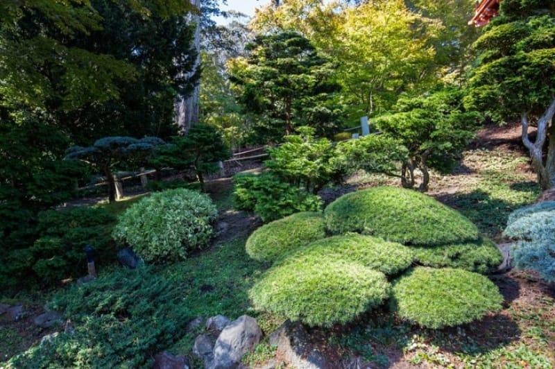 キュー・ガーデンのおすすめスポット③京都西本願寺勅使門