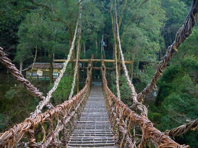スリル満点、絶叫吊り橋・徳島〈祖谷のかずら橋〉