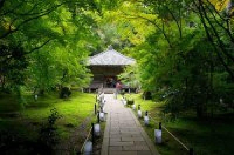 円通院で宮城松島観光を楽しもう!縁結びって本当?アクセスや見どころは?   wondertrip