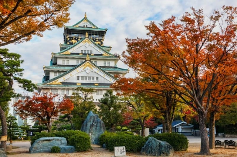 イチョウ並木は圧巻・大阪城公園