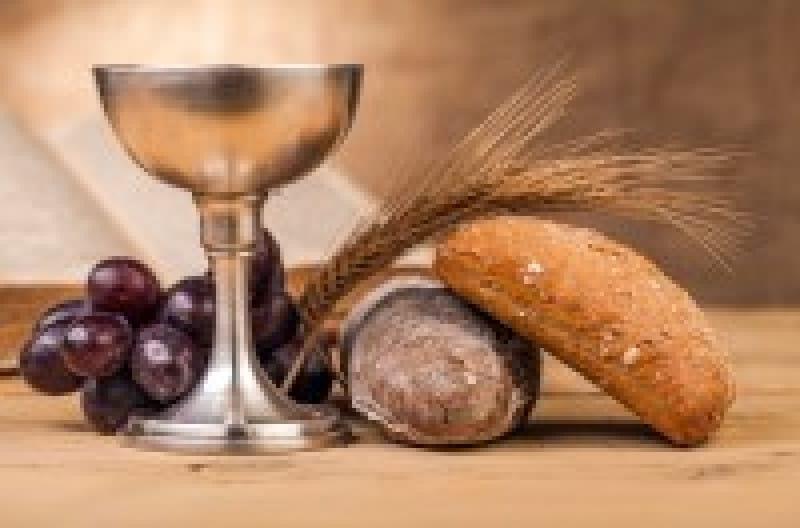 ワインの歴史は、人類の歴史そのものだった | wondertrip