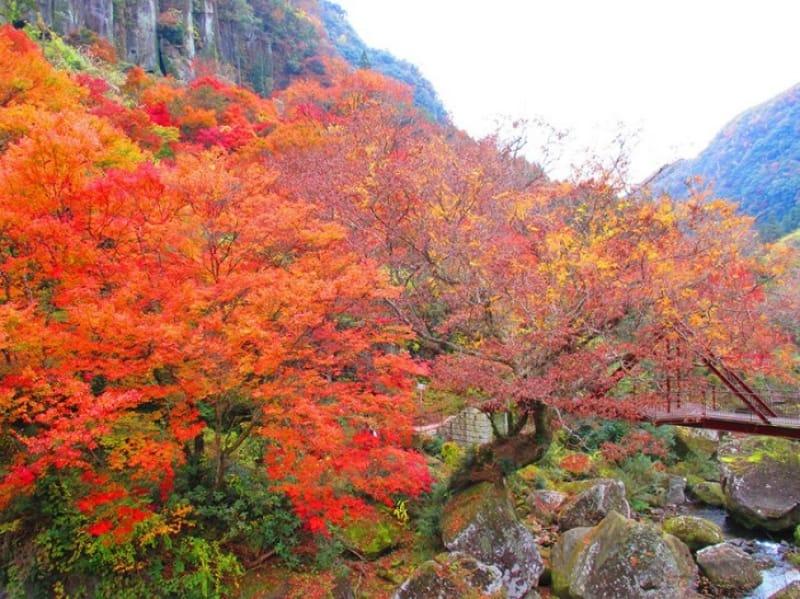 九州随一の紅葉スポット・深耶馬溪