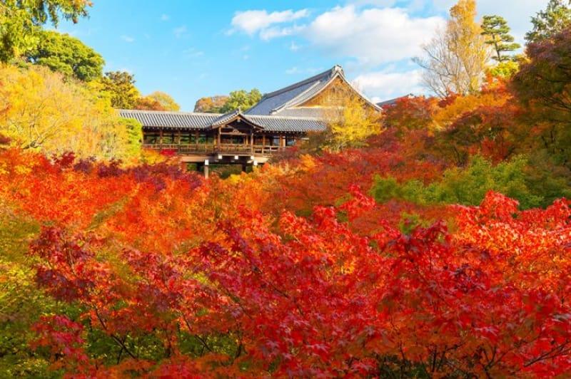 25の塔頭寺院がある 東福寺
