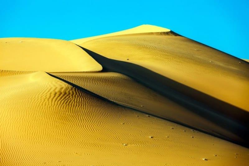 砂漠を駆けるアクティビティ