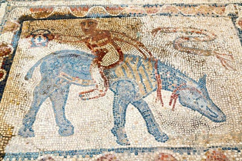 古代ローマのサーカス デザルターの家