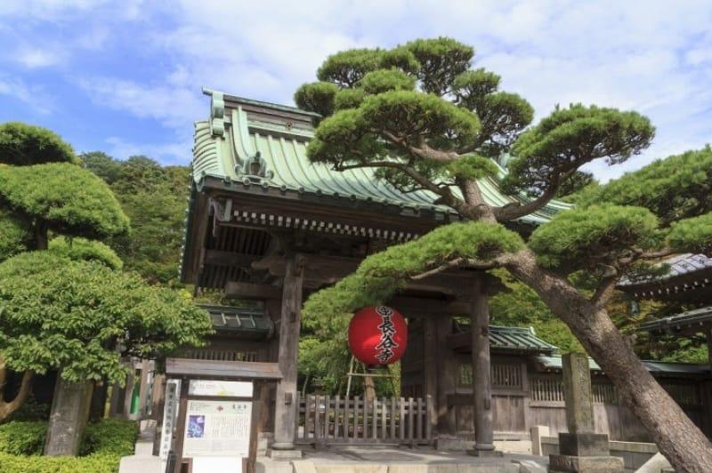 お花が綺麗な人気スポット「長谷寺」