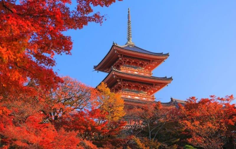 やっぱり秋は清水寺