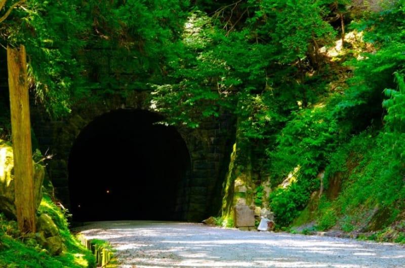 文学にも残る「天城トンネル」
