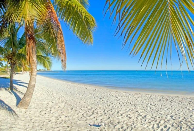 文豪の愛したリゾートにしてサンゴ礁の楽園、キーウェスト