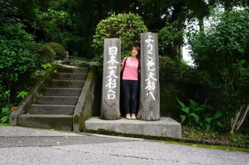 99918:日本一の大杉!「杉の大スギ」へ