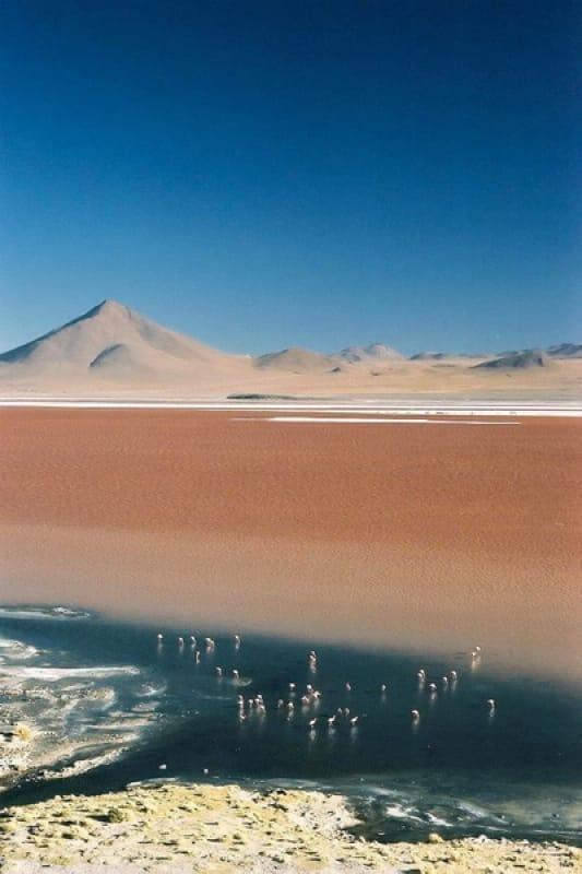 ラグナ・コロラダ(Laguna Colorada)