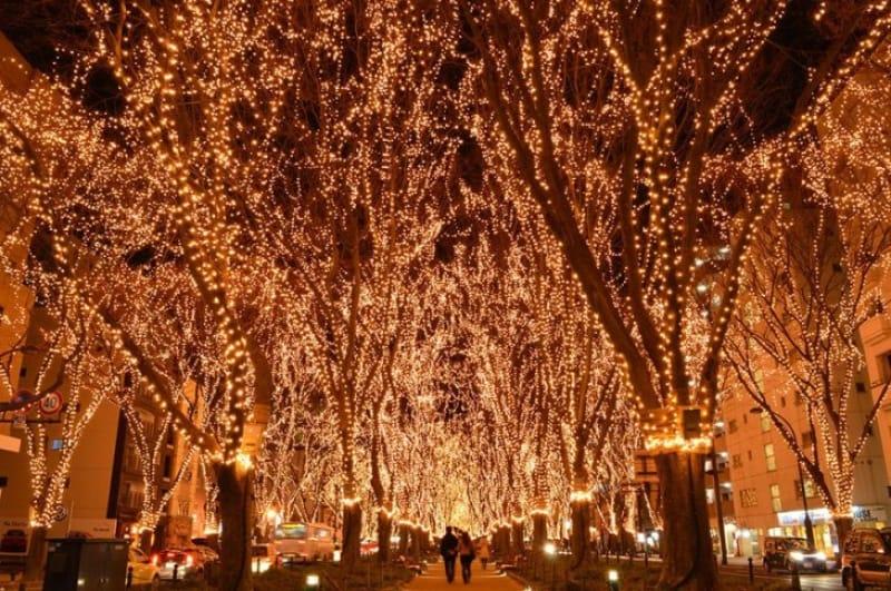 「冬」の見どころといえば「仙台光のページェント」