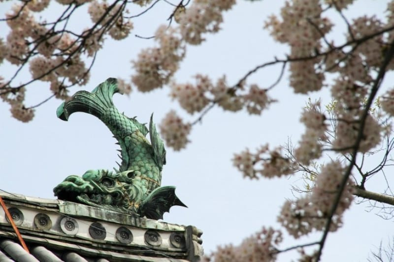 村中城から佐賀城へ