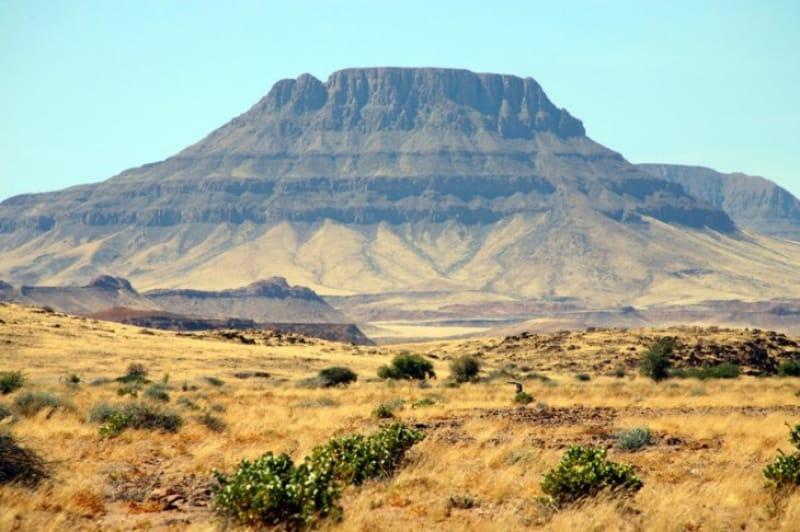 砂漠にそびえる緑の楽園