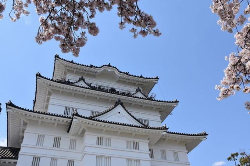京都で「伊勢新九郎盛時」と名乗る