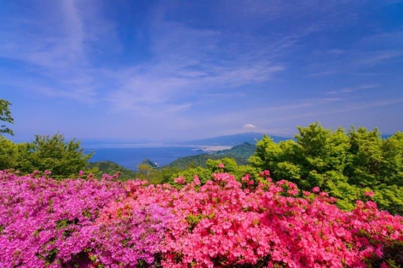 伊豆の国パノラマパークは「恋人の聖地」と呼ばれています