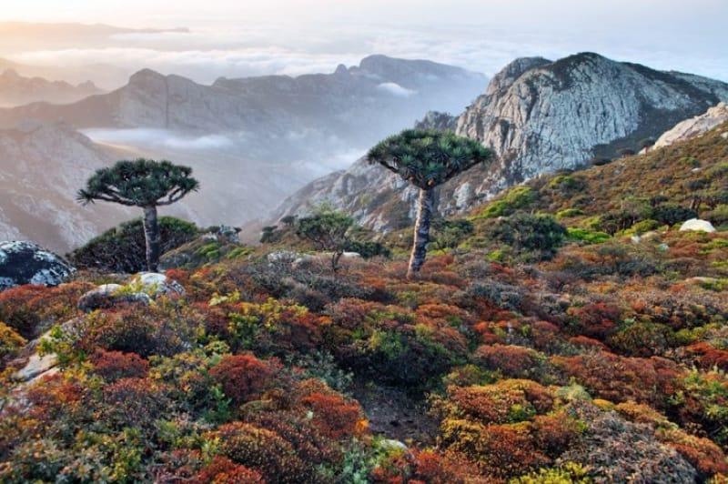 どこか神秘的な雰囲気を醸し出す山々