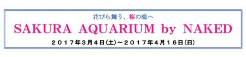 93050:『SAKURA AQUARIUM by NAKED』イベントの特徴