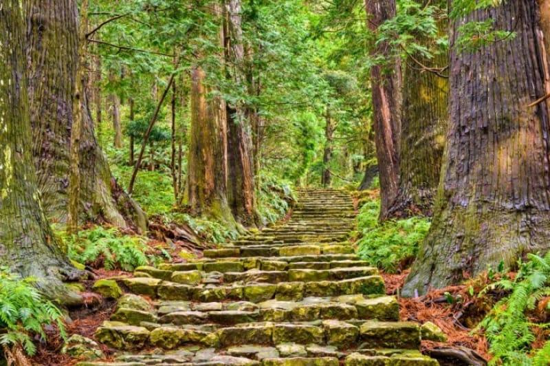 熊野古道の「伊勢路」を歩きたい