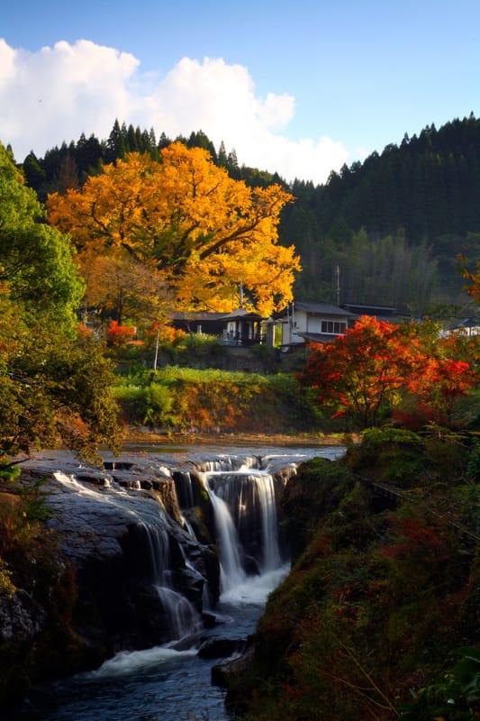 春は桜、夏は涼・轟の滝公園