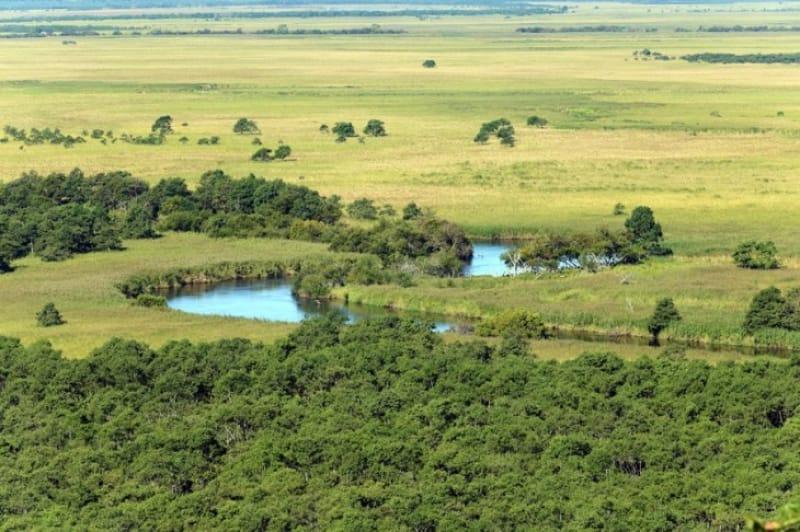 日本で最初のラムサール条約登録湿地