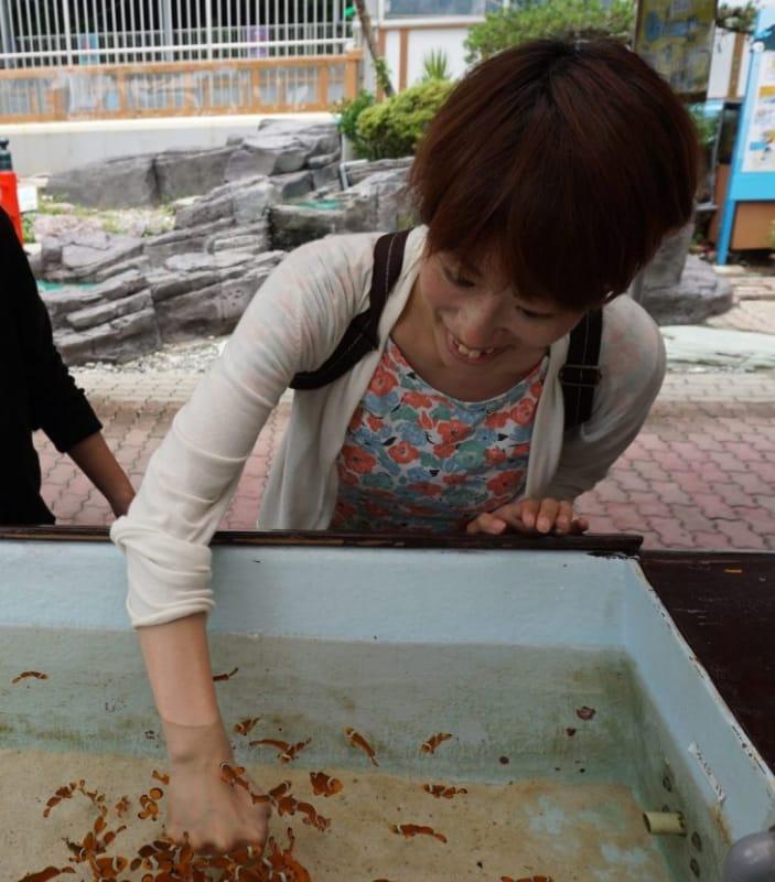 99839:見て、触れて、感じる桂浜水族館
