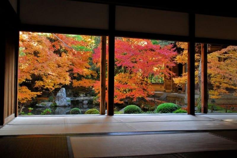 池泉鑑賞式庭園が美しい蓮華寺