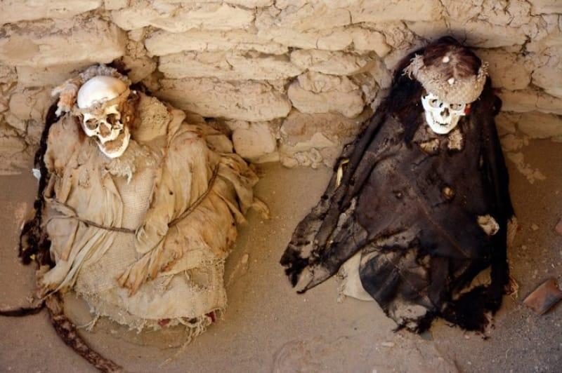先住民や古代生物のミイラ・化石が出土する土地