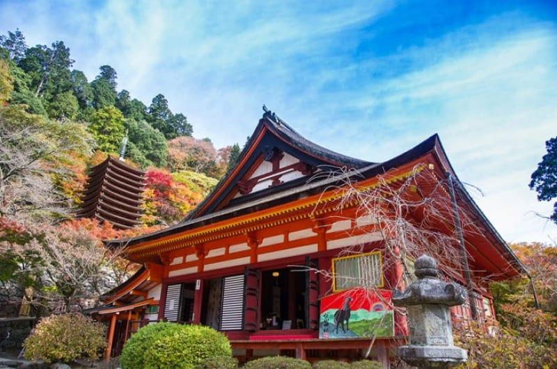 談山神社があるのは奈良県の「桜井市」