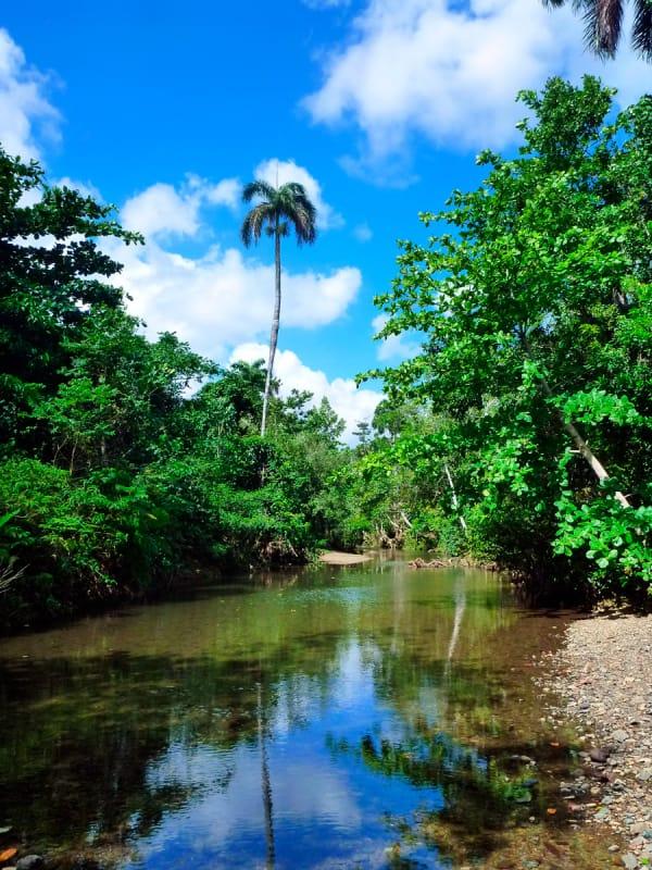 動植物の楽園、アレハンドロ・デ・フンボル国立公園