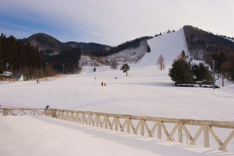 大鰐温泉スキー場って、どんなスキー場?