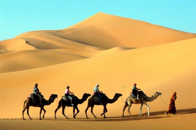 絶景の星空を望むサハラ砂漠ツアー