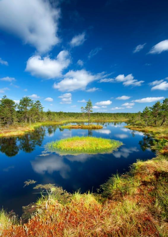 手つかずの自然が残るラヘマ国立公園