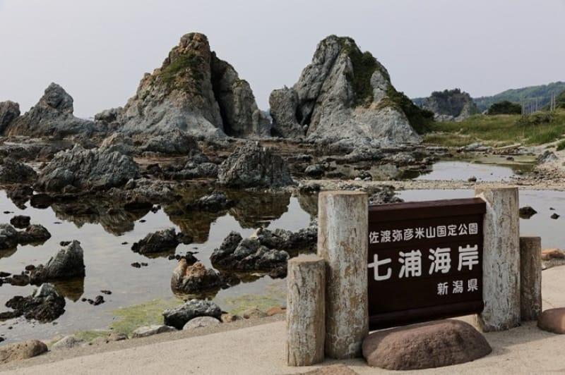 仲睦まじい夫婦岩・七浦海岸