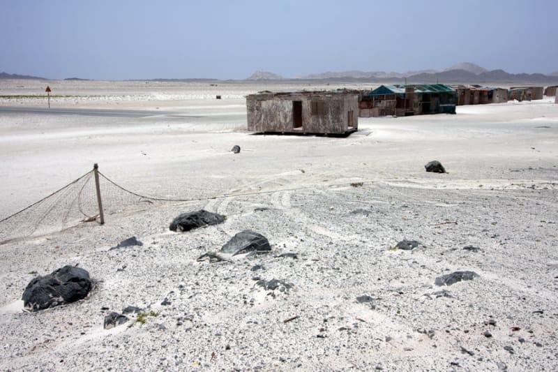 世界一が生まれる砂漠