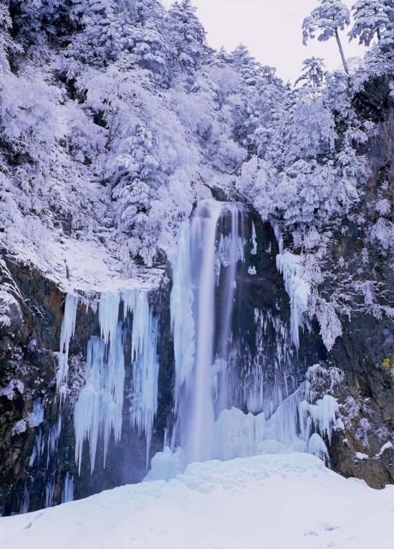 徳島の冬の旅 これをみずには終われない