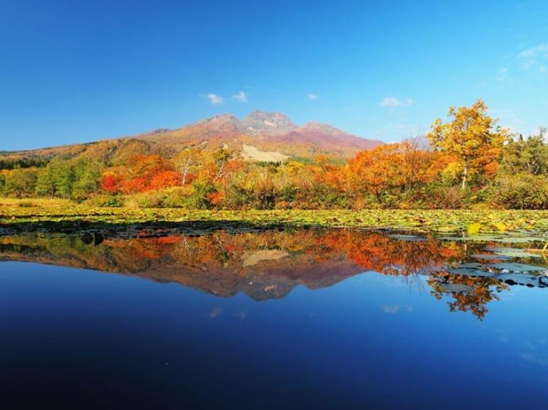 のんびりと自然を楽しむ いもり池