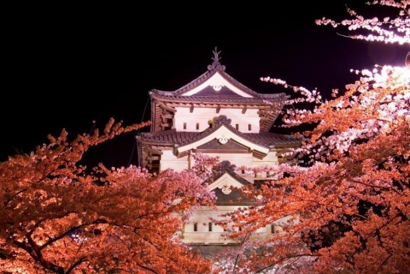弘前城の桜祭り、2017年の期間・時間は?