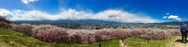 96770:弘法山頂上に到着!