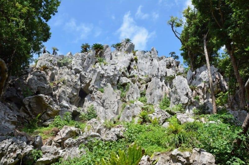 てっぺんからの絶景が壮大な大石林山