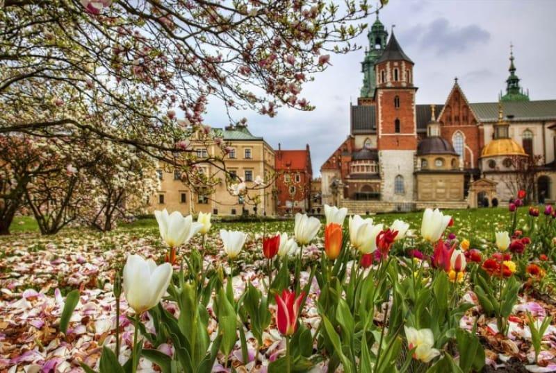 54689:ポーランド文化の中心地、首都クラクフのはじまり