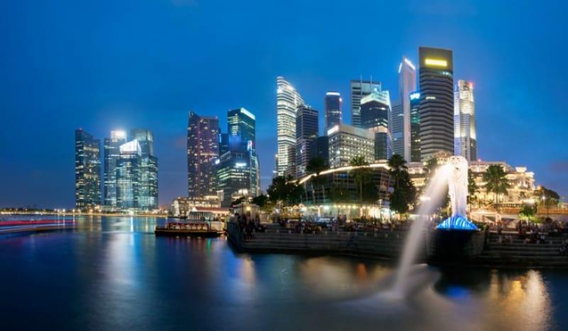 シンガポールの顔と一緒に